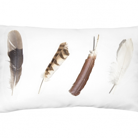 Feather Scatter Cushion